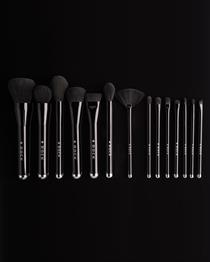 ROCK  Makeup Artist Brushes  14 Set